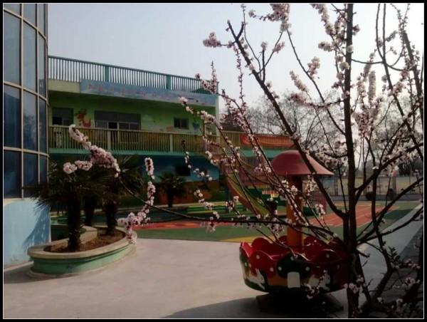 幼儿园主题活动:春天真美丽
